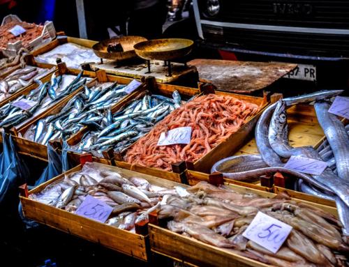 Sai davvero scegliere il pesce in pescheria?